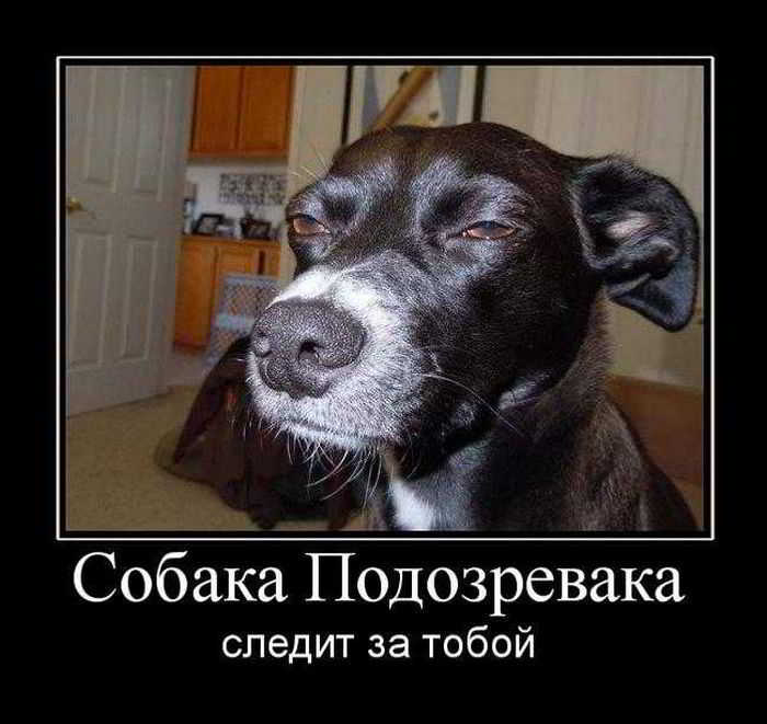 http://zhovtnewe.ucoz.ua/_ph/13/85639740.jpg